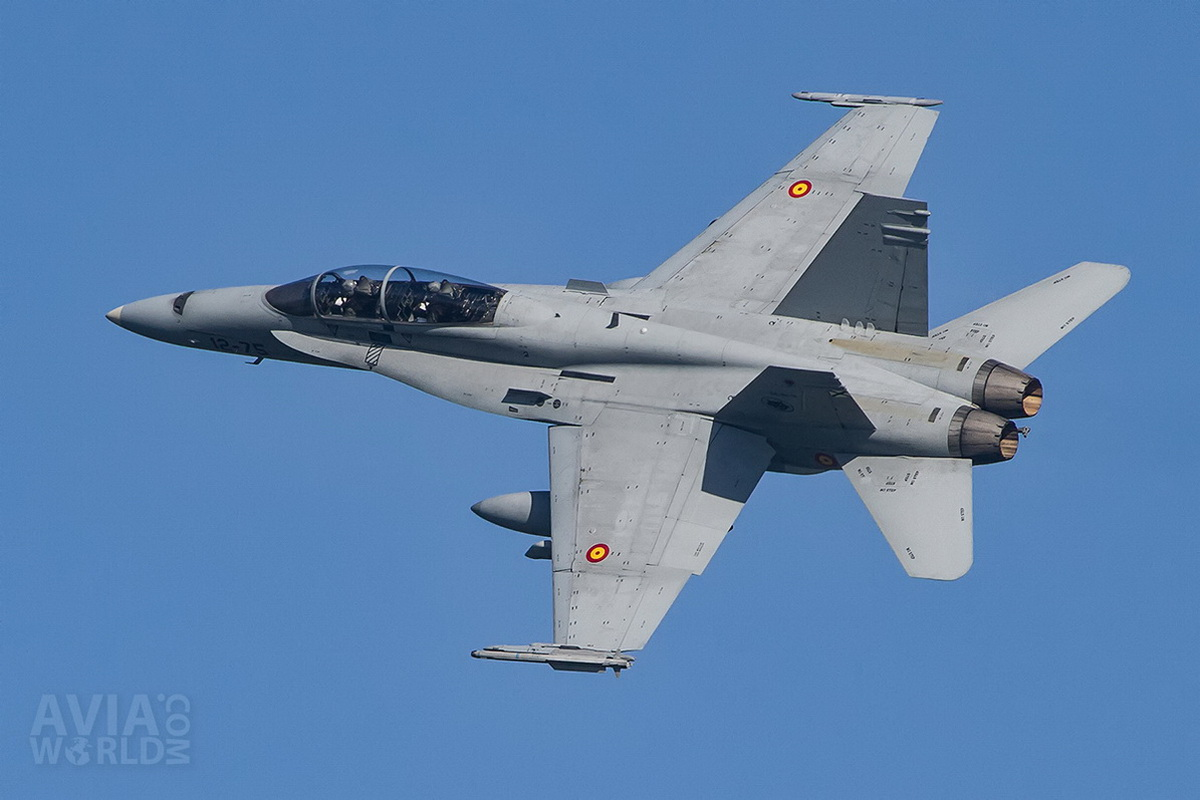 Ejercito del Aire EF-18B Hornet - CE15-12 - 12-75