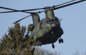 Boeing CH-47D Chinook above the tree tops