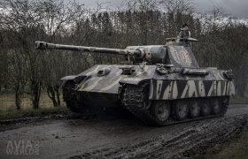 Panther Replica